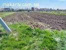 Продаю земельну ділянку під будівництво в смт. Макарів
